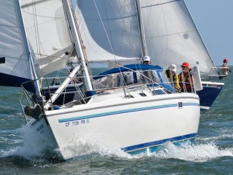 sailing-hull-jib-sail-spinnaker-recreation-water
