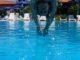 basen-solankowy